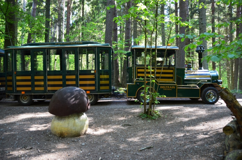 treintje van natuurpark Tervete