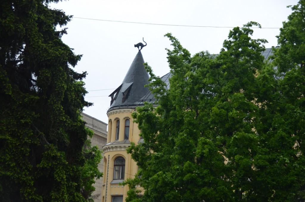 Kat tegenover het Grote Gildehuis in Riga