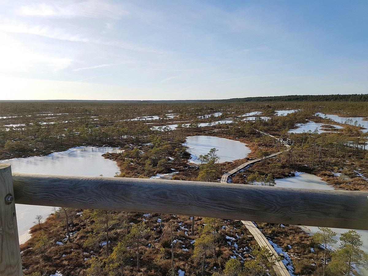 wandelen in het moeras van kemeri
